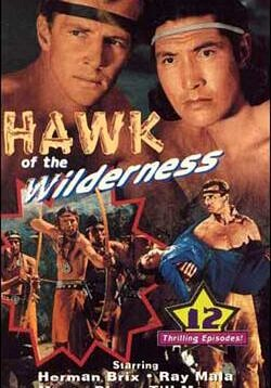 Hawk of the Wilderness - Explorers find a mysterious island north of the Arctic Circle where a fabulous treasure is hidden. 12 Chapters